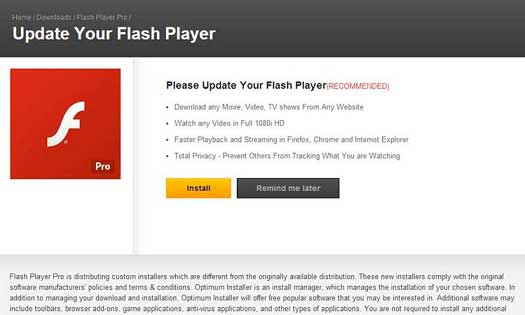 warning your flash player may be out of update